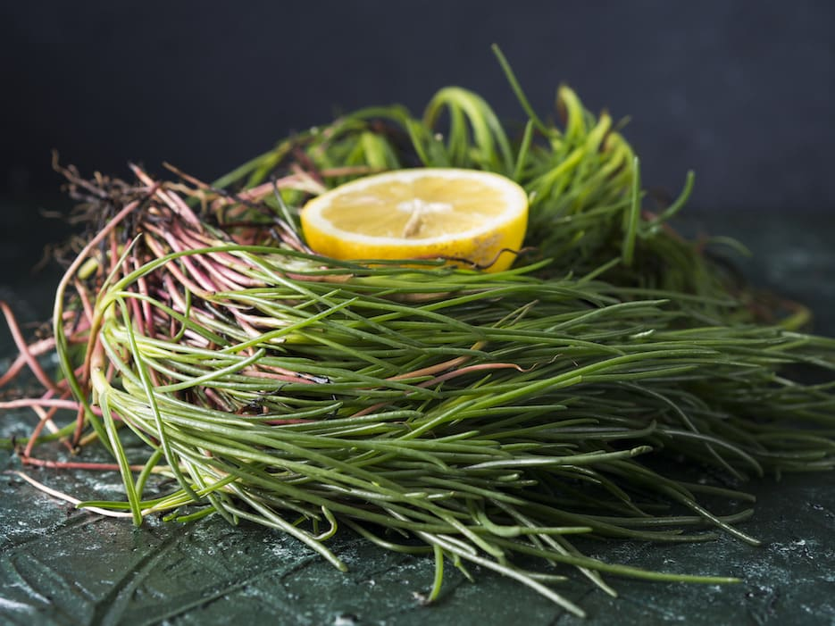 agretti ingrediente