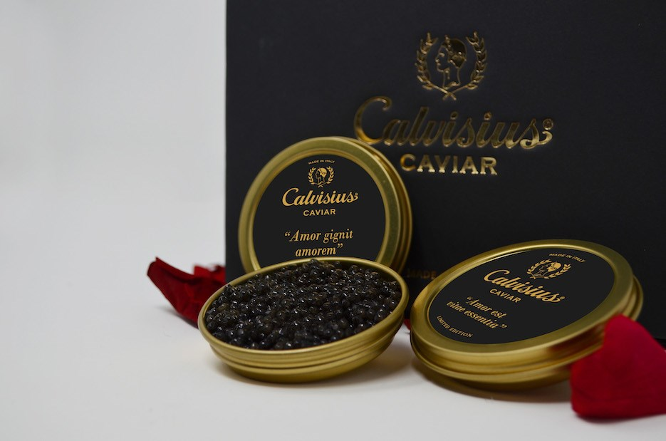 original_Calvisius-IN-LOVE-1.jpg
