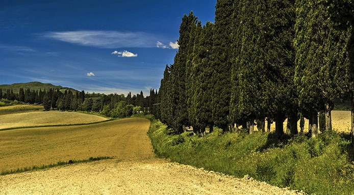 wine-tour-in-toscana