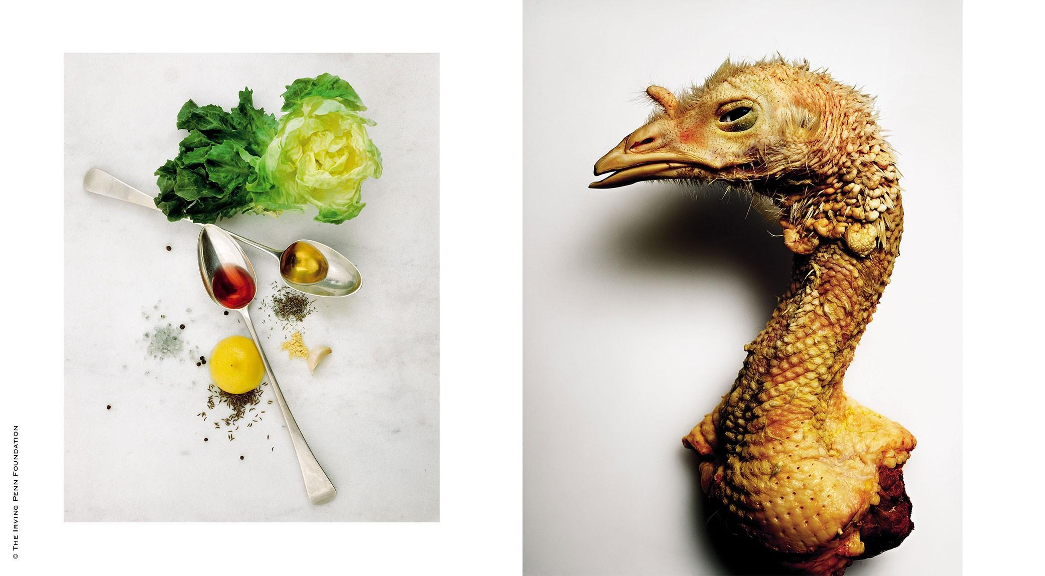 Irving Penn, Salad Ingredients | Irving Penn, Turkey Neck