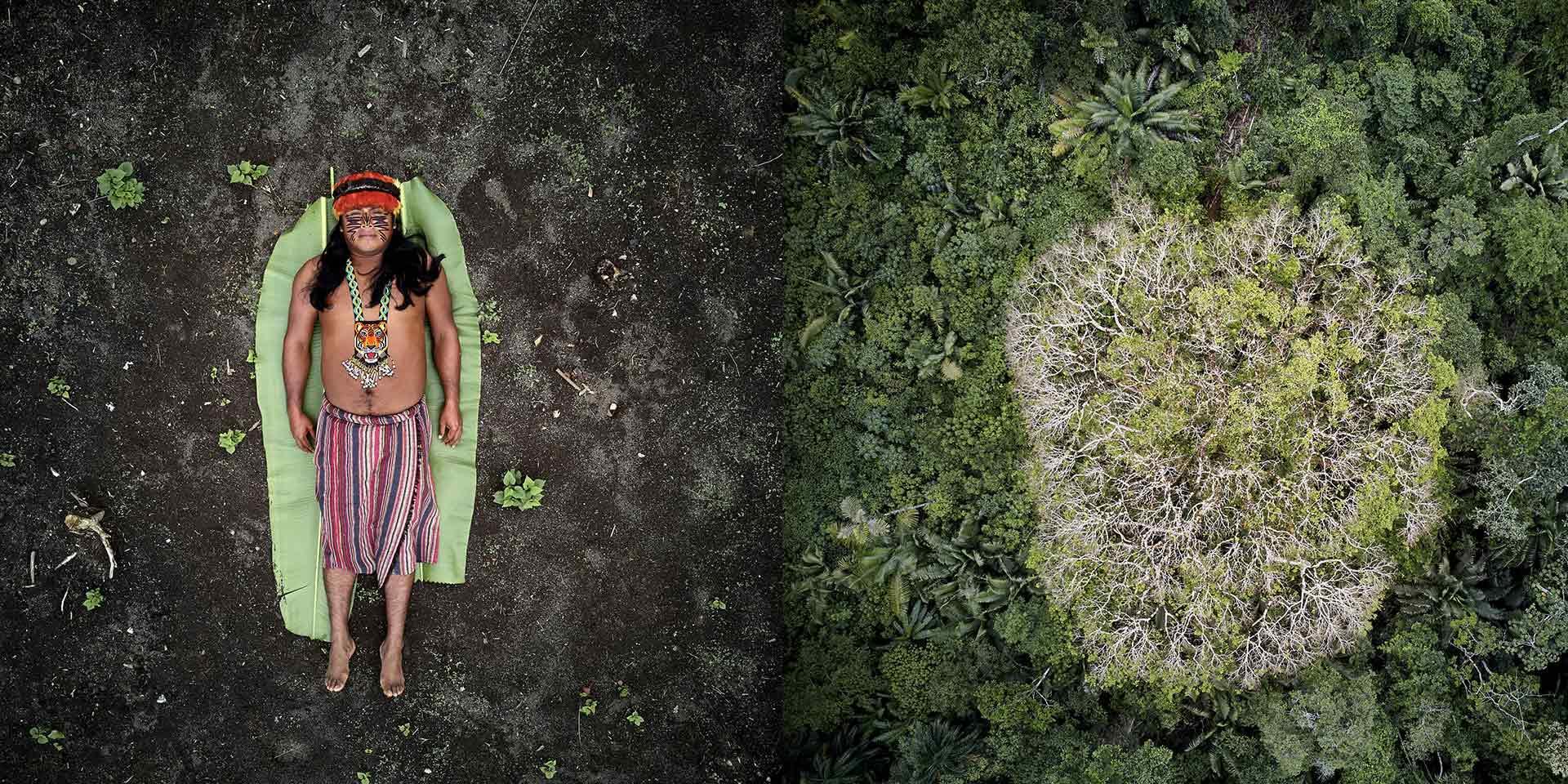 Una Persona sdraiata a terra con accanto una foresta