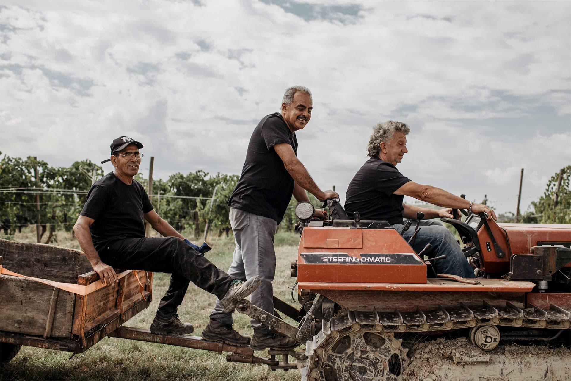 vignaioli sul trattore