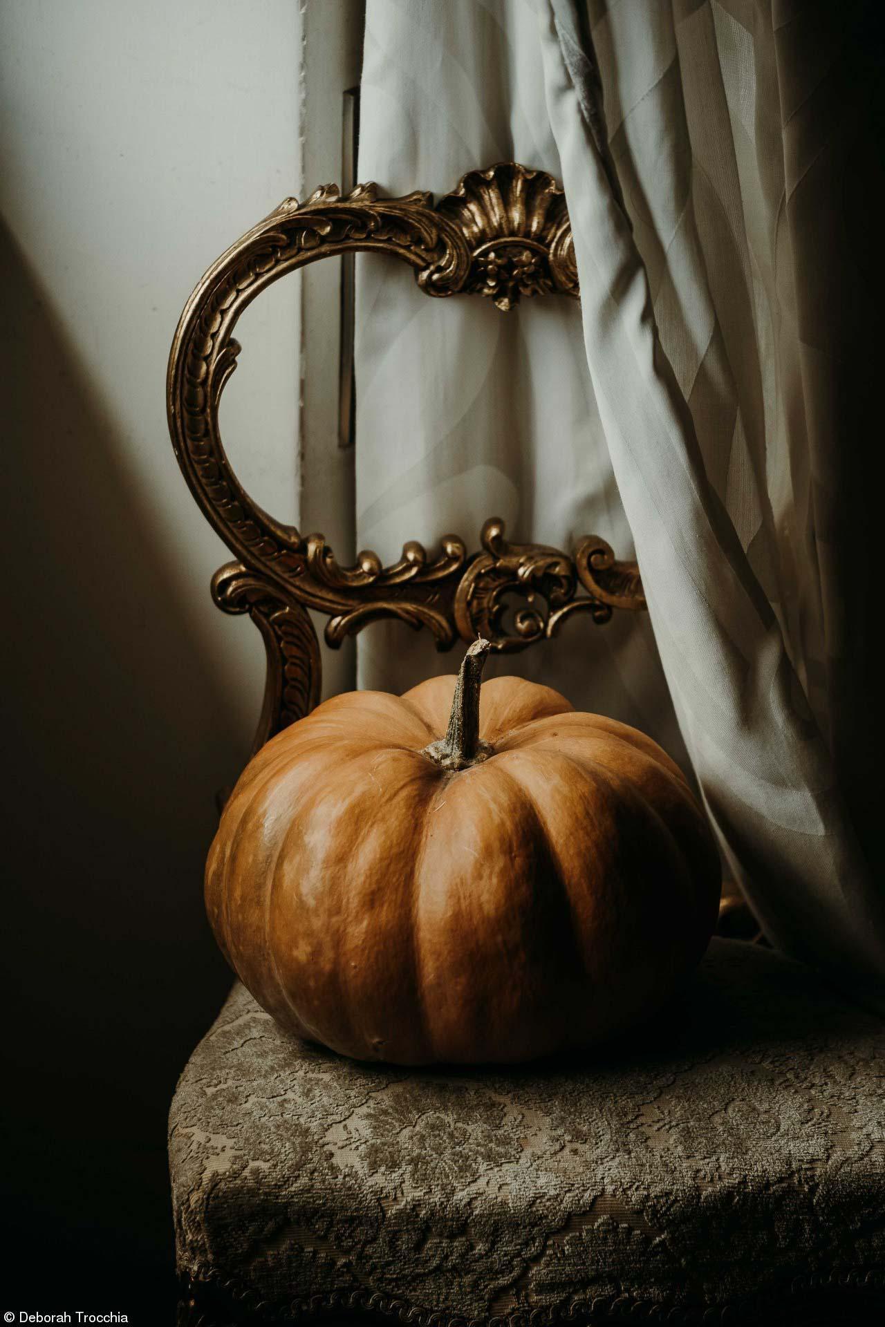 Deborah Trocchia - Lumière d_automne
