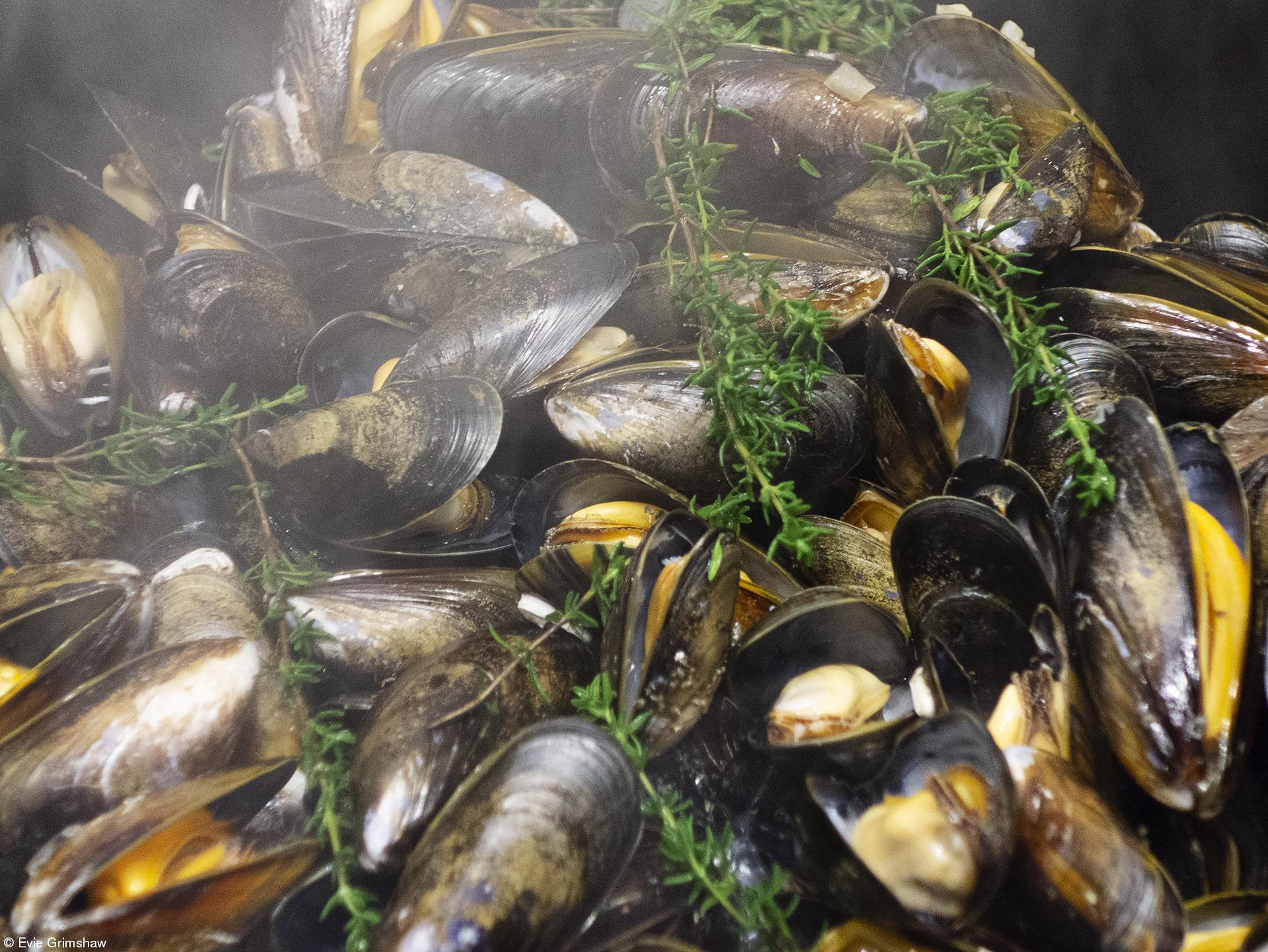 Young 10 and Under - Evie Grimshaw - Mussels with Steam