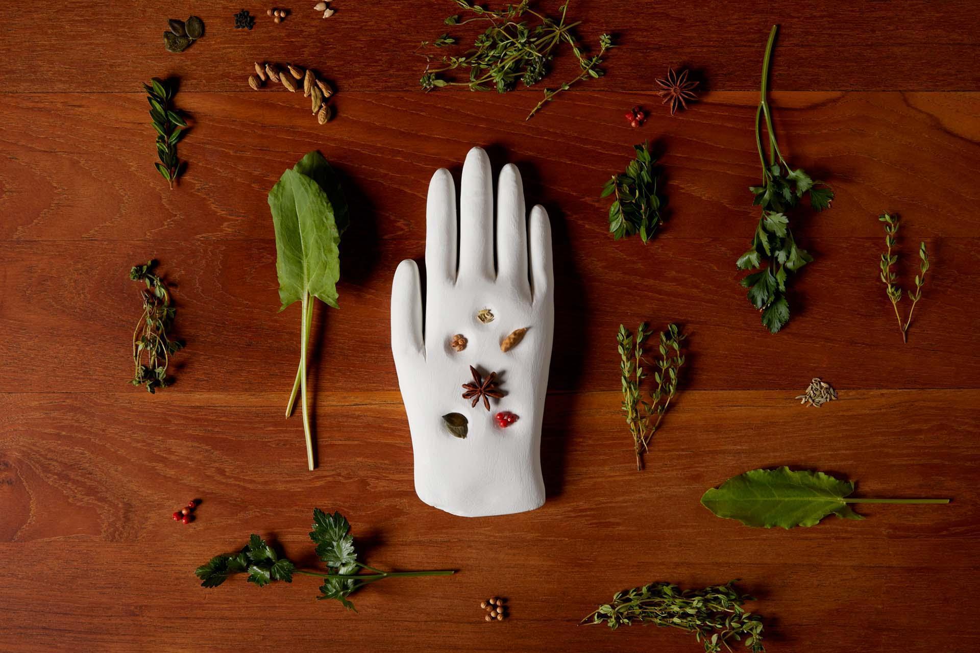 HAND OF THE FARMER