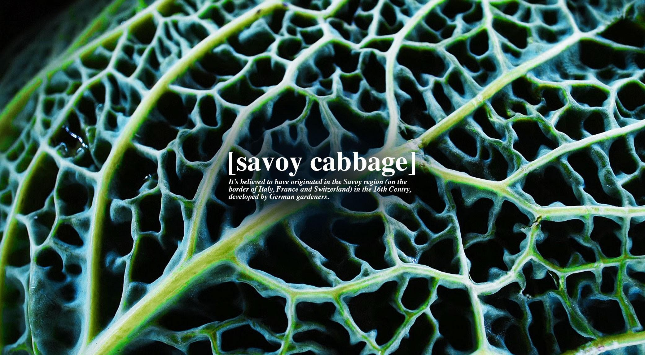 008-savoy-cabbage-finedininglovers