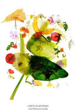 Colortaste---L-orto-di-Antonio