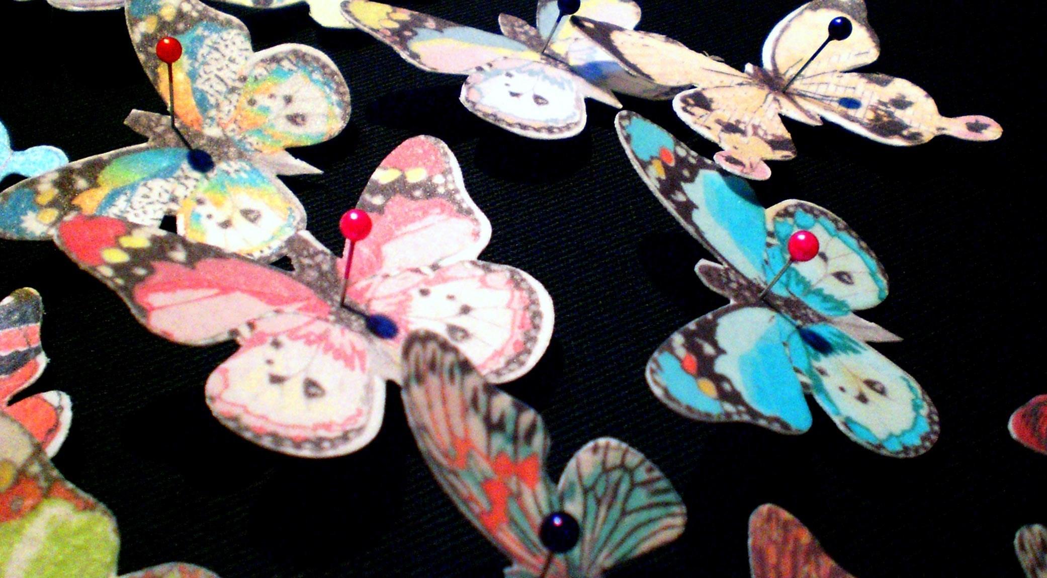Natascia-Fenoglio-Md-Butterfly