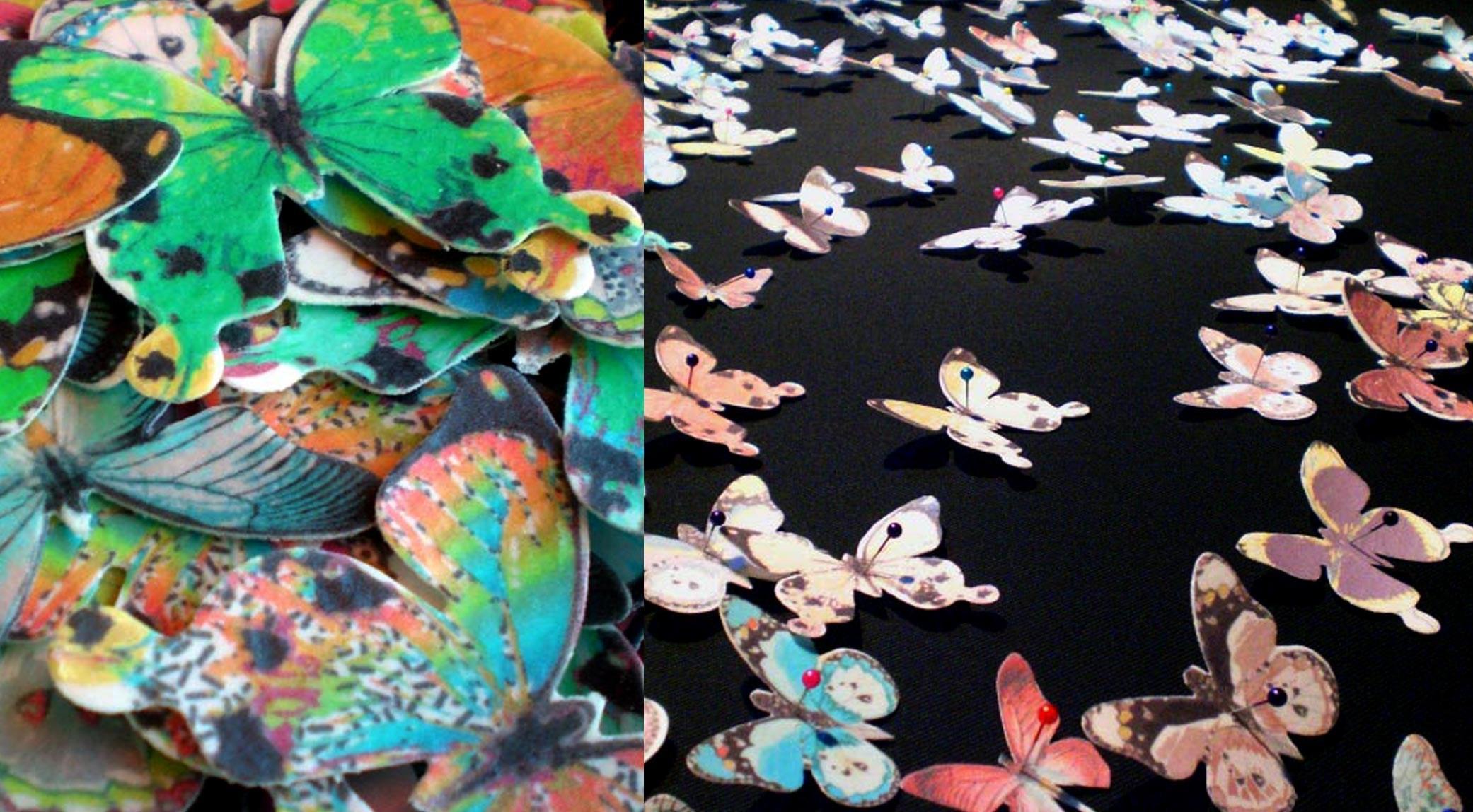 Natascia-fenoglio-Butterfly
