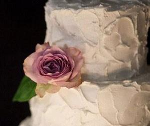 cake-design-store-online-di-torte