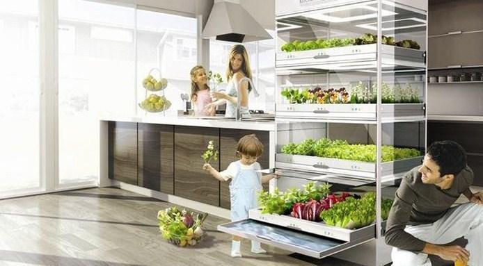 cosa-mangeremo-in-futo-kitchen-nano-garden
