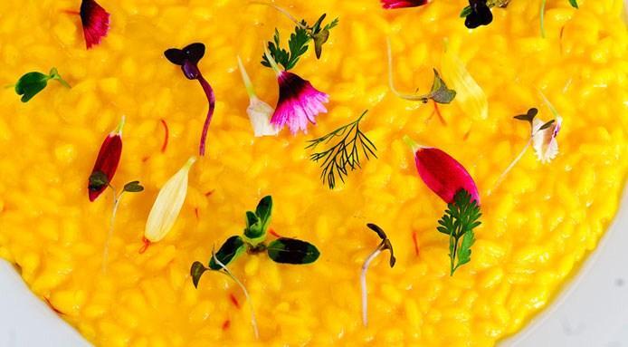 risotto-fabrizio-tesse-chef